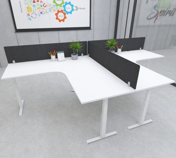 height adjustable radial desks with black privacy screen