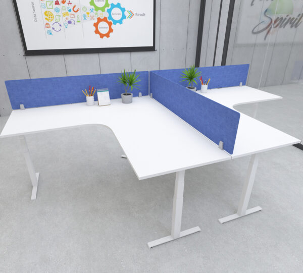 height adjustable radial desks with blue privacy screen