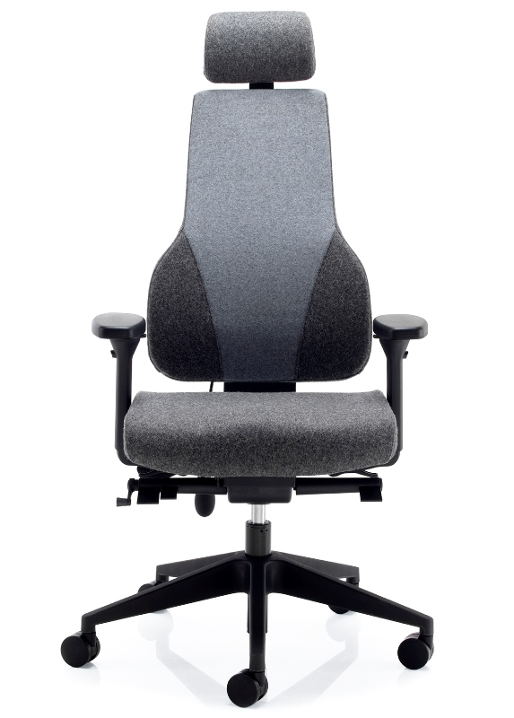 APEX with headrest two tone