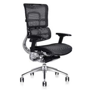 Bad Back Pain Office Chairs